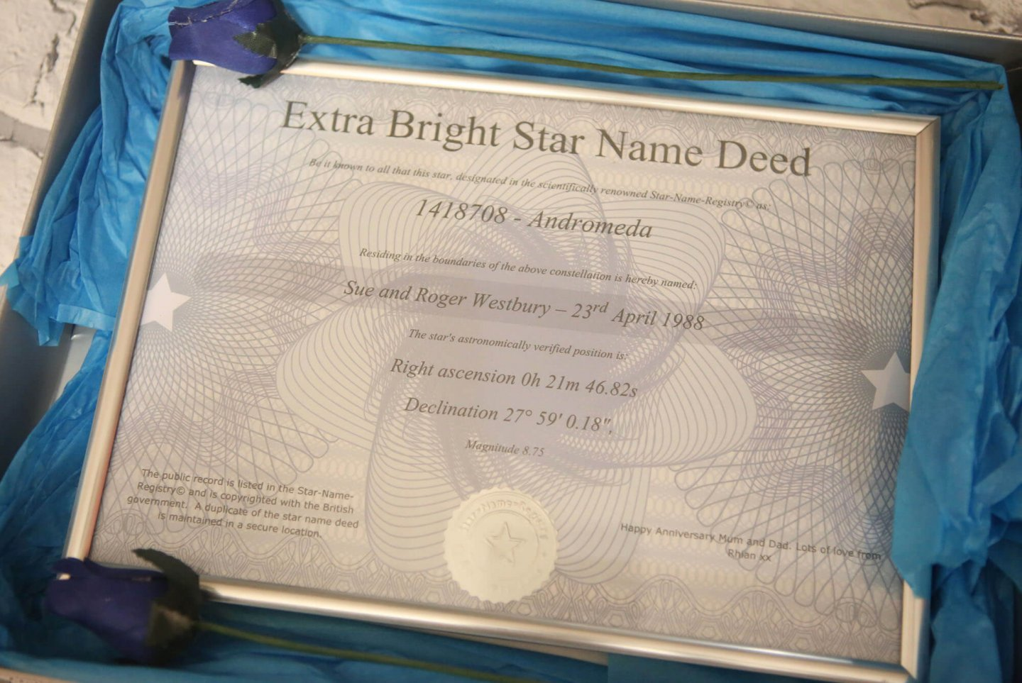 Wish Upon Your Own Personalized Star