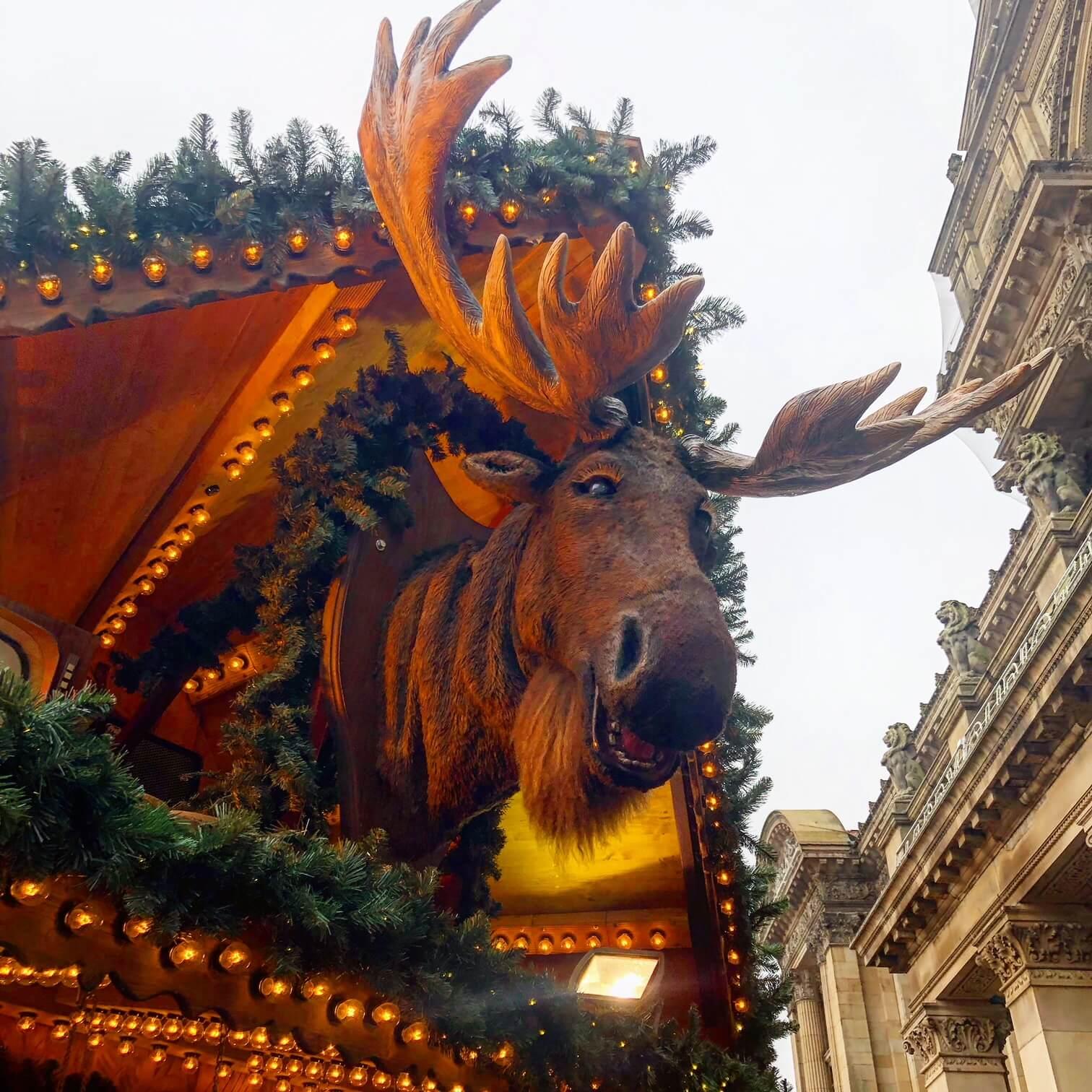 Reindeer at the Birmingham Christmas Market