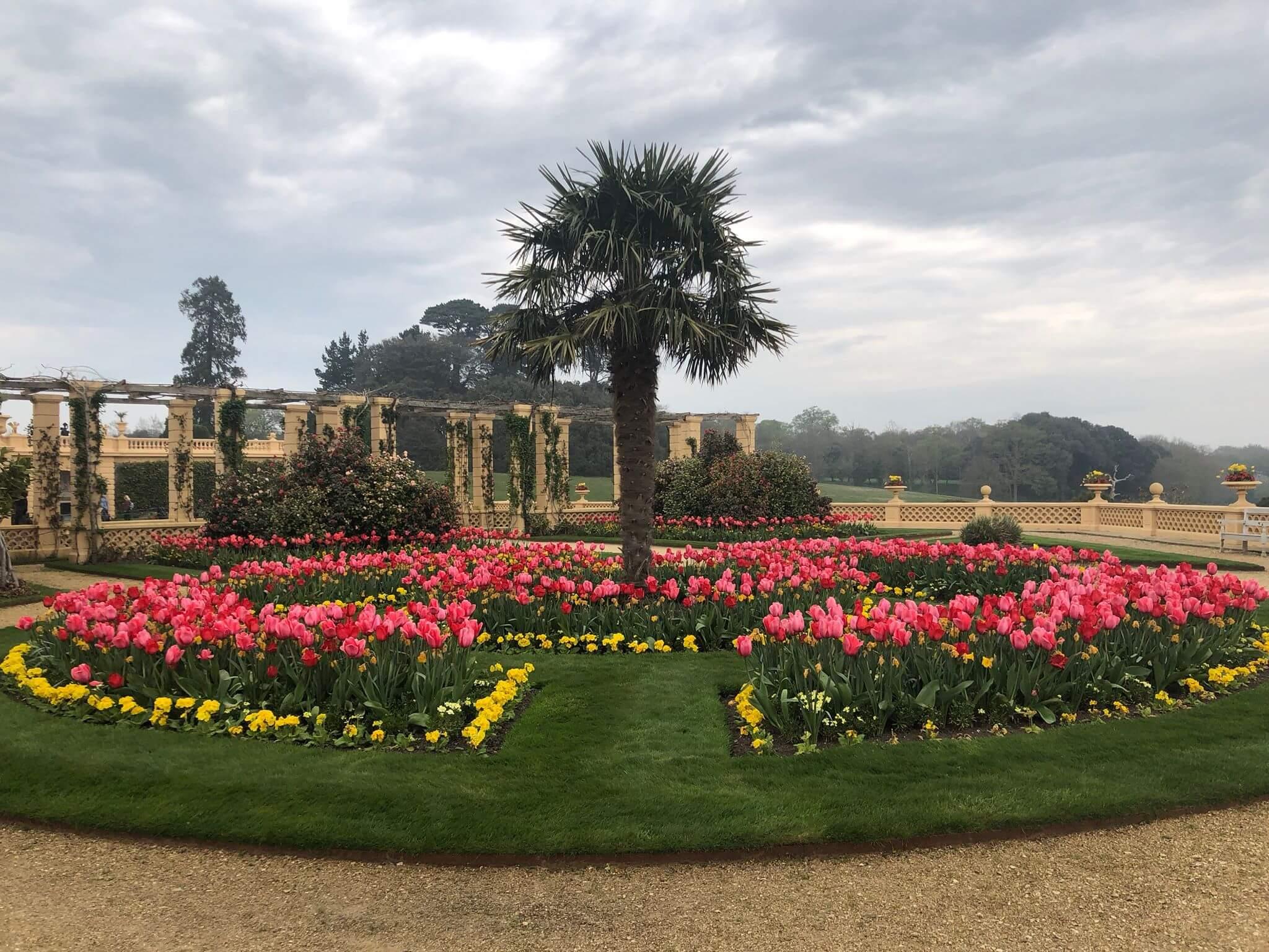osborne house tulip gardens