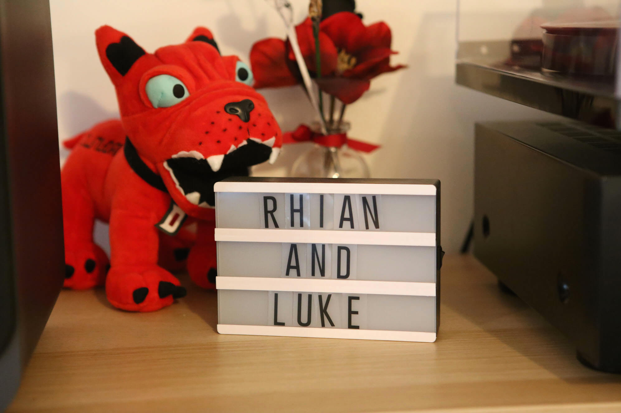Rhian and Luke home light box